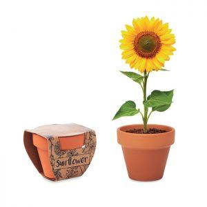 Terracotta pot 'sunflower' SUNFLOWER MO6147-40
